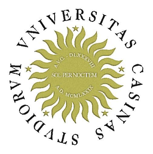 Università degli Studi di Cassino e del Lazio Meridionale