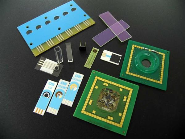 Biosensori Basati su Microrganismi per il Controllo delle Acque e degli Impianti di Trattamento delle Acque