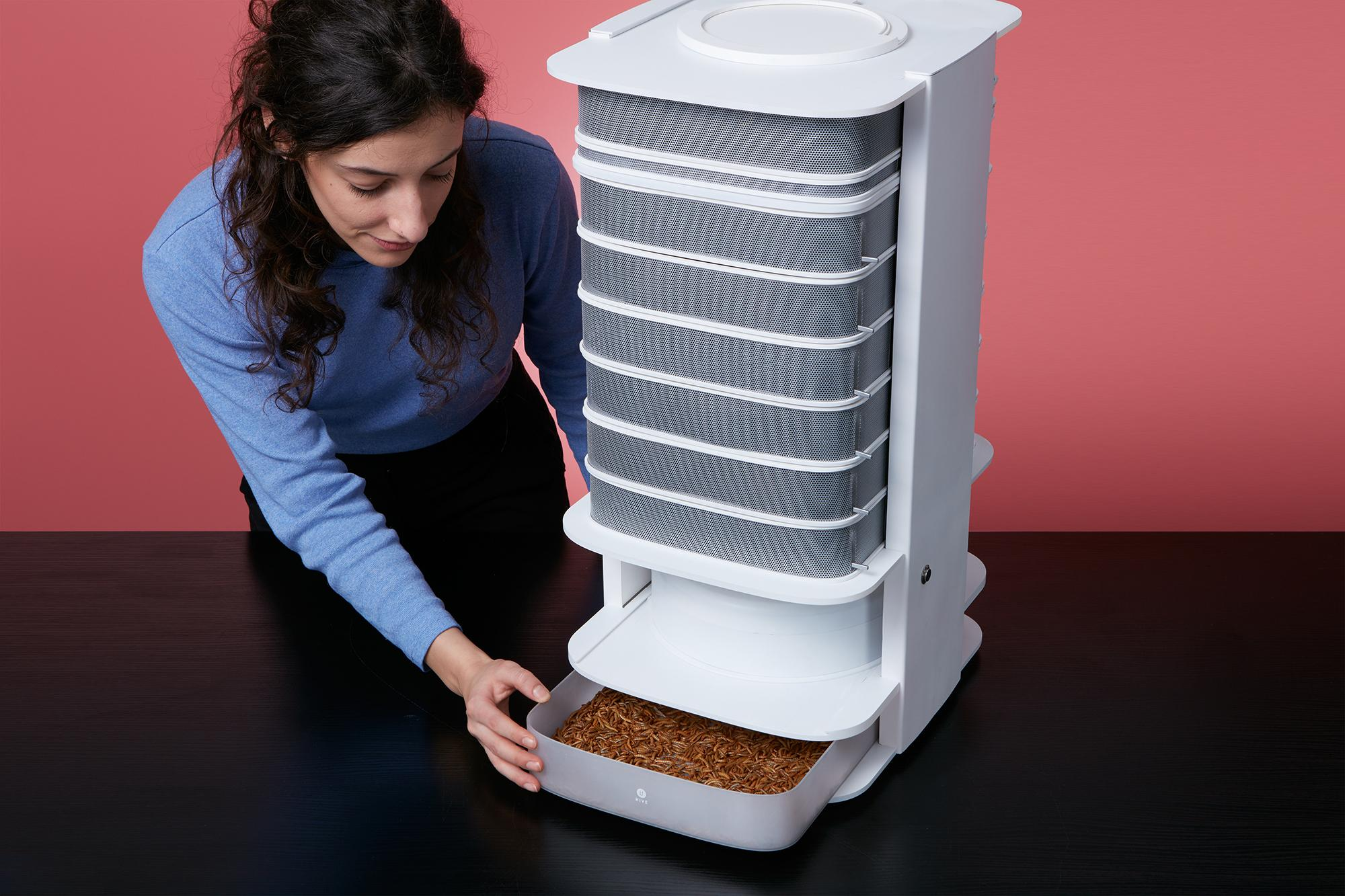 The world´s first desktop Hive to grow edible insects in your home and start a food revolution out of your kitchen ! (Titolo suggerito)LIVIN farms Hive