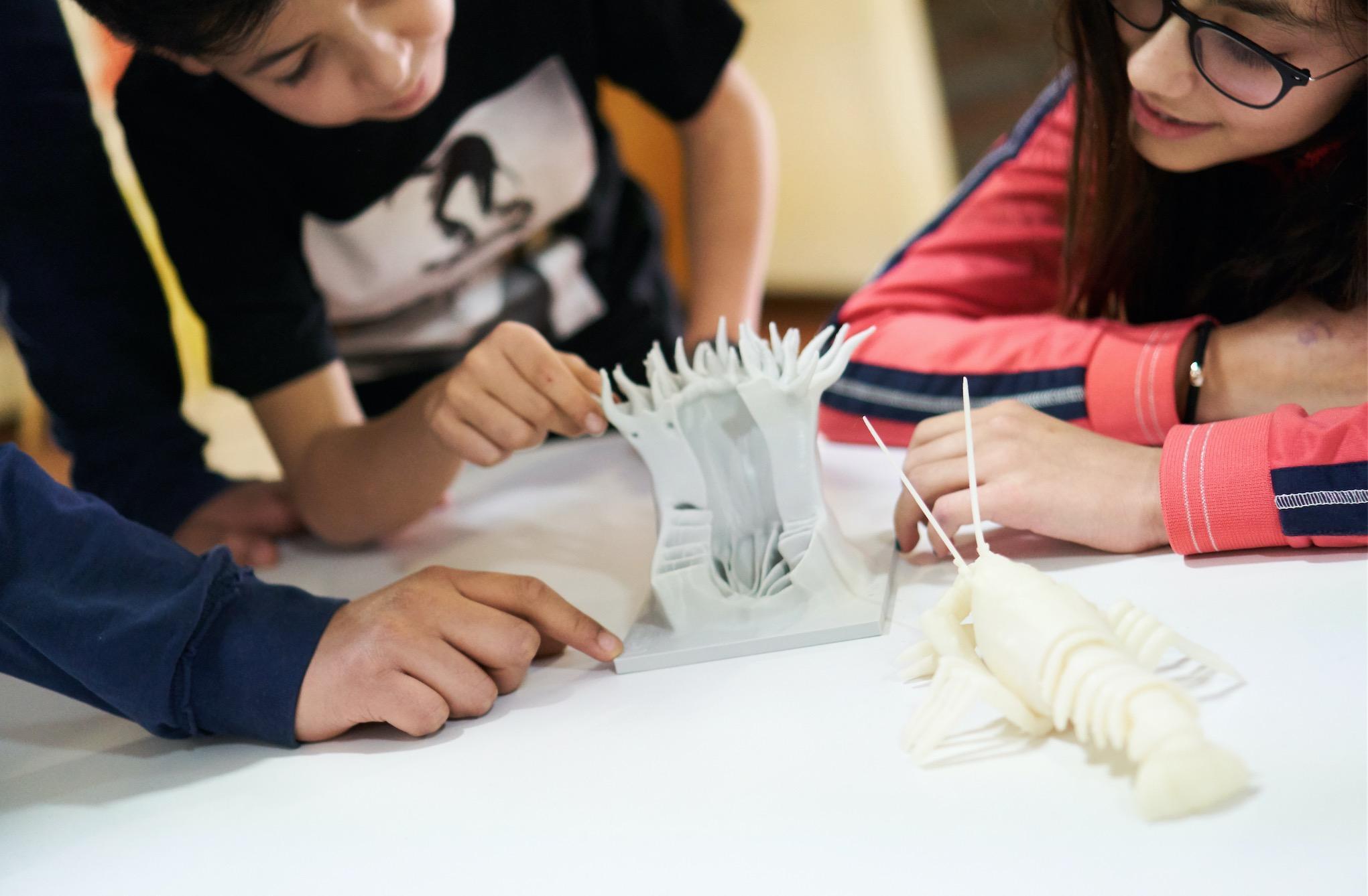 Climax 3D - immagina, crea, stampa