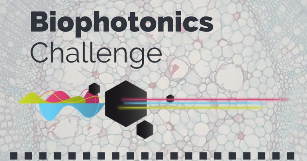 Laboratori tecnologici e digitali fai-da-te (DIY) per la pratica dei corsi STEM: We-Lab per Biofotonica (case study)