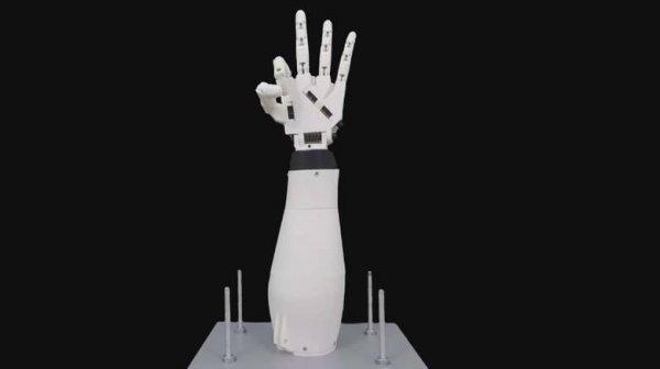Hand of Rob
